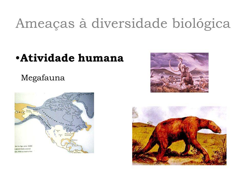 Ameaças à diversidade biológica Atividade humana Megafauna