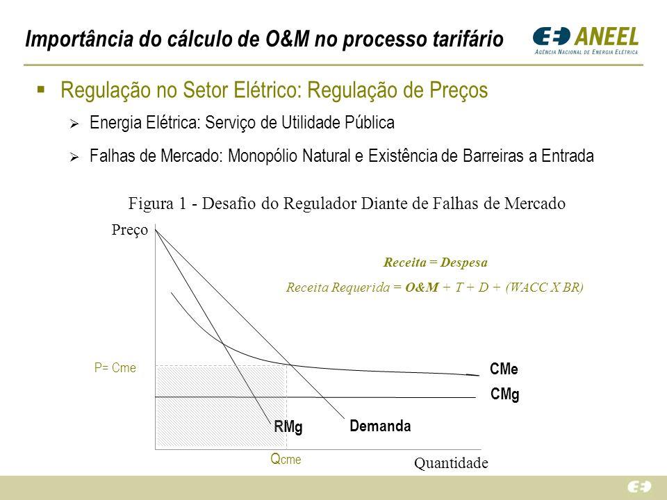 Importância do cálculo de O&M no processo tarifário Regulação no Setor Elétrico: Regulação de Preços Energia Elétrica: Serviço de Utilidade Pública Fa