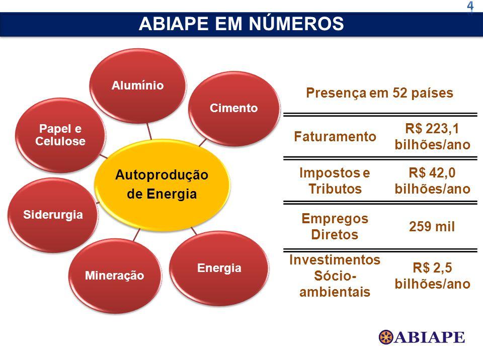 Autoprodução de Energia AlumínioCimentoEnergiaMineraçãoSiderurgia Papel e Celulose ABIAPE EM NÚMEROS Presença em 52 países Faturamento R$ 223,1 bilhõe