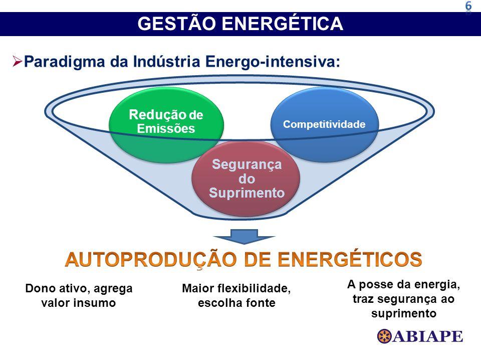 Paradigma da Indústria Energo-intensiva: Competitividade Redução de Emissões Segurança do Suprimento GESTÃO ENERGÉTICA Dono ativo, agrega valor insumo