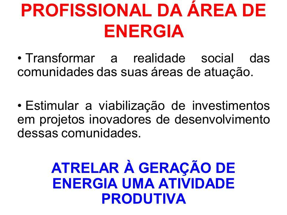 PROFISSIONAL DA ÁREA DE ENERGIA Transformar a realidade social das comunidades das suas áreas de atuação. Estimular a viabilização de investimentos em
