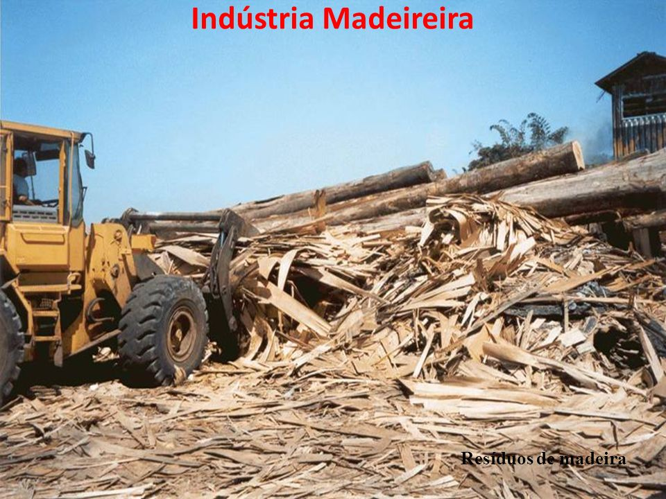 Resíduos de madeira Indústria Madeireira