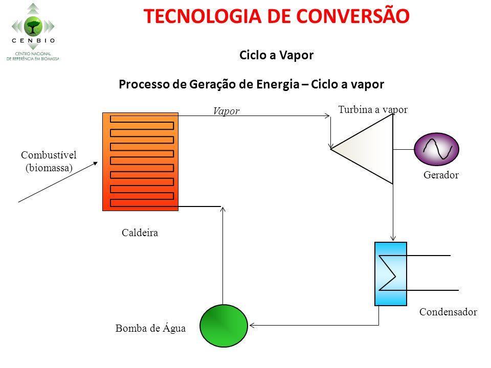 Bomba de Água Vapor Turbina a vapor Condensador Gerador Caldeira Combustível (biomassa) Processo de Geração de Energia – Ciclo a vapor TECNOLOGIA DE C