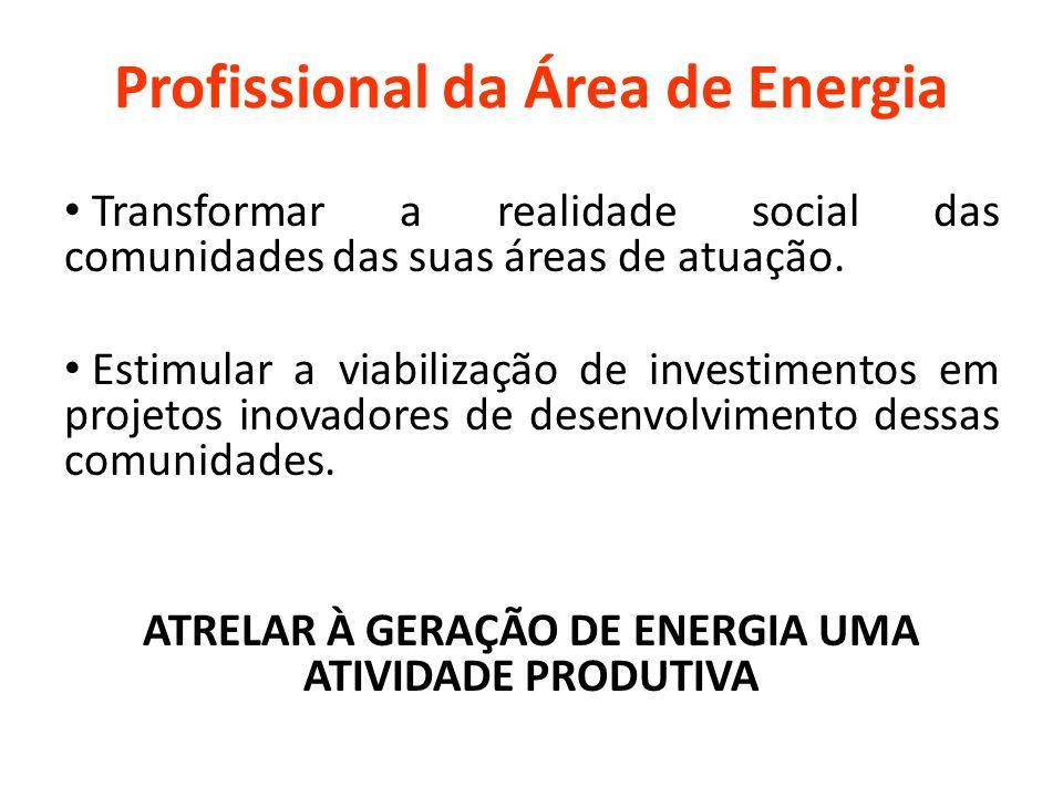 SETOR ELÉTRICO Crise atual do setor elétrico.Falta de garantia na oferta de energia.