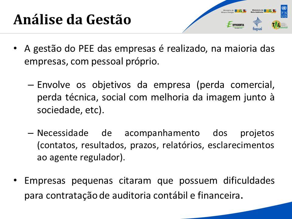 Análise da Gestão A gestão do PEE das empresas é realizado, na maioria das empresas, com pessoal próprio. – Envolve os objetivos da empresa (perda com