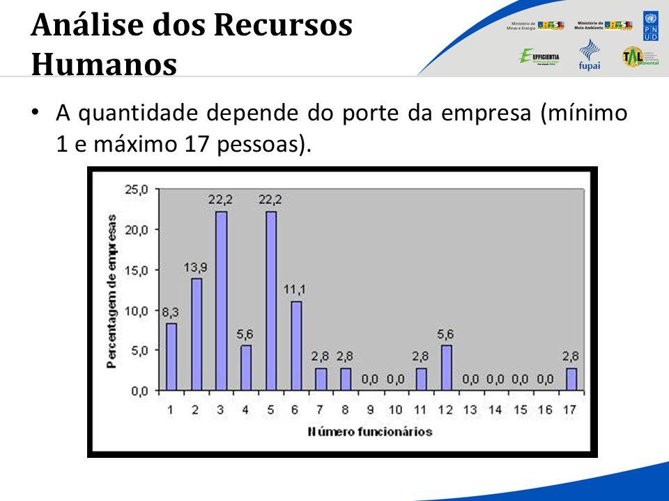 Análise dos Recursos Humanos A quantidade depende do porte da empresa (mínimo 1 e máximo 17 pessoas).