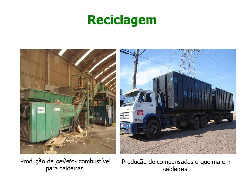 Reciclagem Produção de pellets - combustível para caldeiras. Produção de compensados e queima em caldeiras.