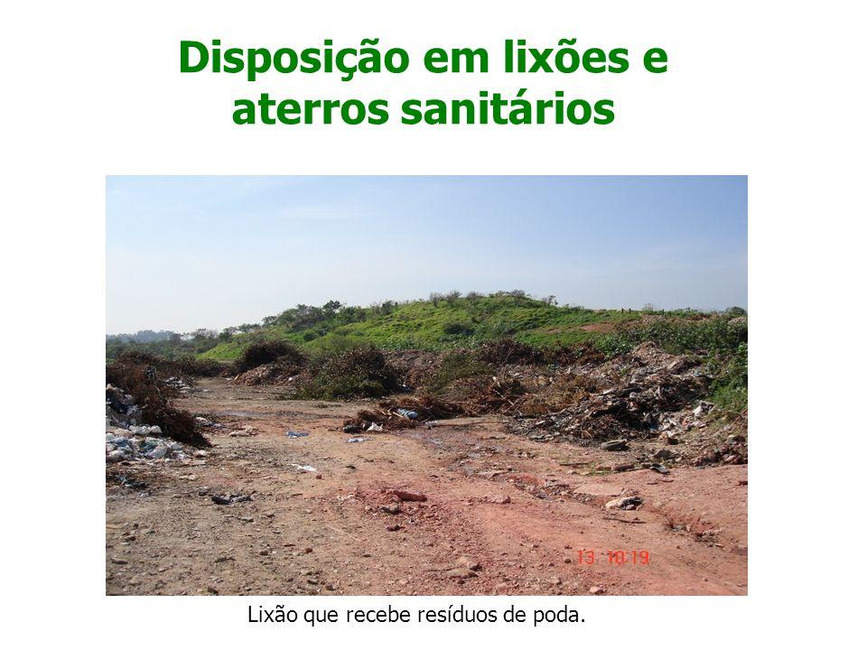 Trituração dos Resíduos de Poda