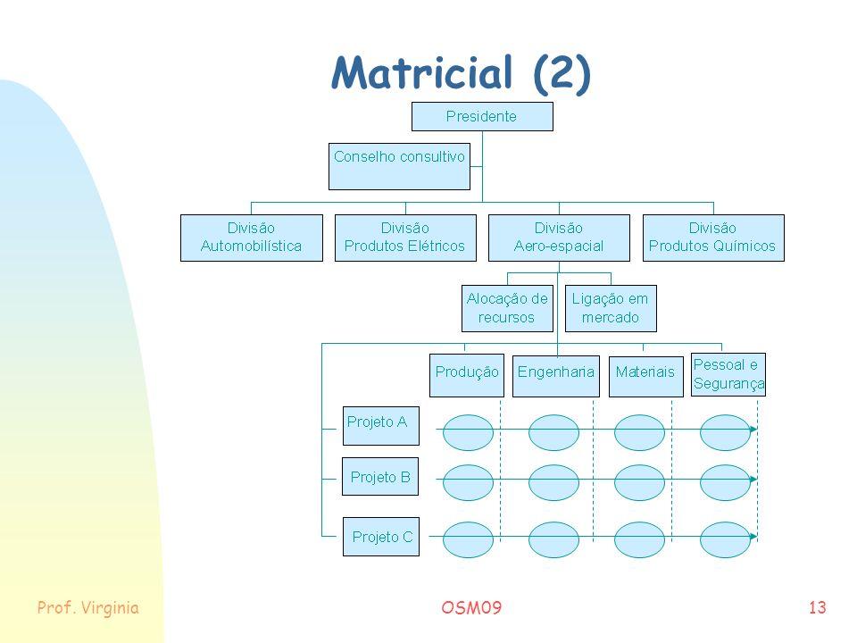 Prof. VirginiaOSM0913 Matricial (2)