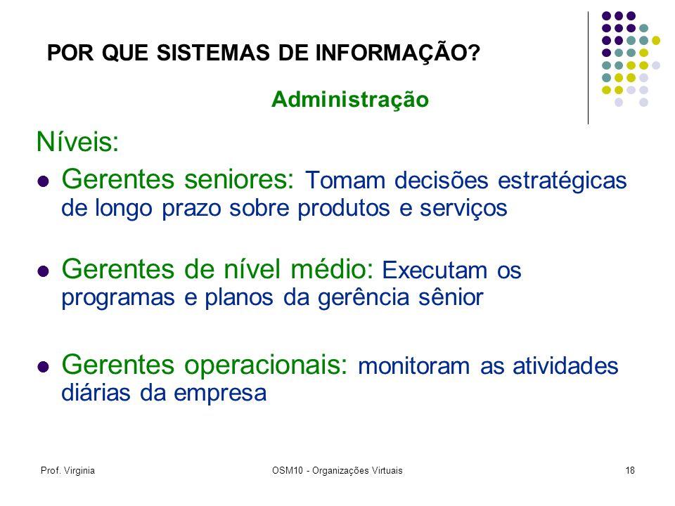 Prof. VirginiaOSM10 - Organizações Virtuais18 Níveis: Gerentes seniores: Tomam decisões estratégicas de longo prazo sobre produtos e serviços Gerentes