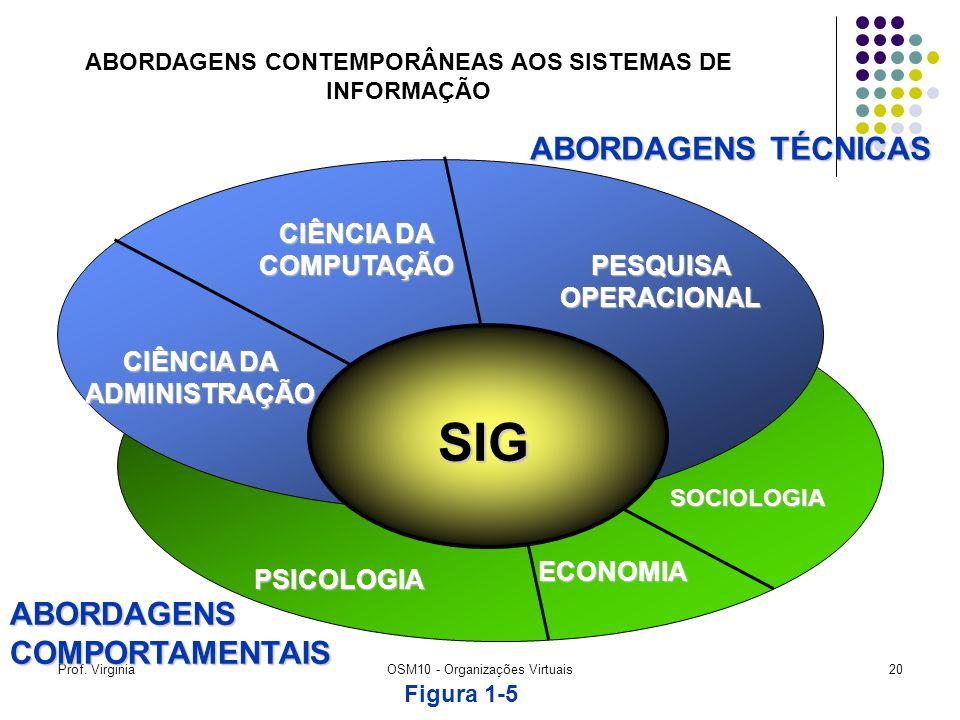 Prof. VirginiaOSM10 - Organizações Virtuais20 ABORDAGENS CONTEMPORÂNEAS AOS SISTEMAS DE INFORMAÇÃO SOCIOLOGIA ECONOMIA PSICOLOGIA CIÊNCIA DA COMPUTAÇÃ