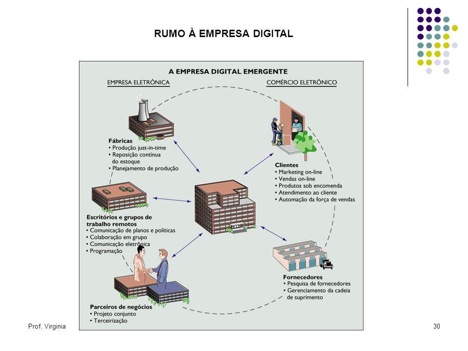 Prof. VirginiaOSM10 - Organizações Virtuais30 RUMO À EMPRESA DIGITAL