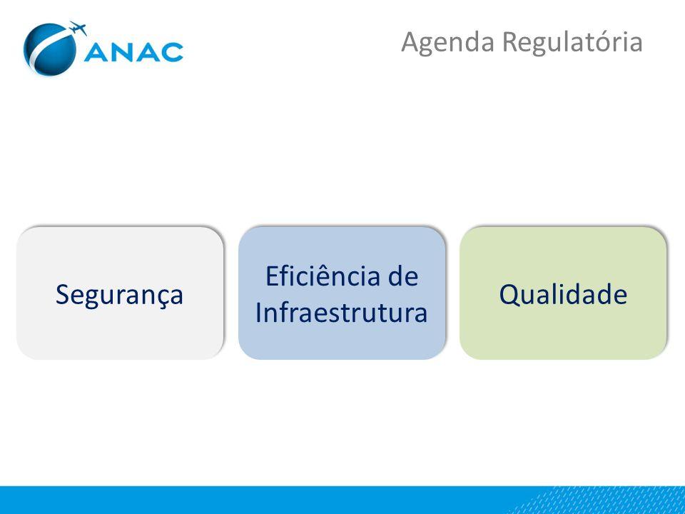 Qualidade Eficiência de Infraestrutura Segurança Agenda Regulatória