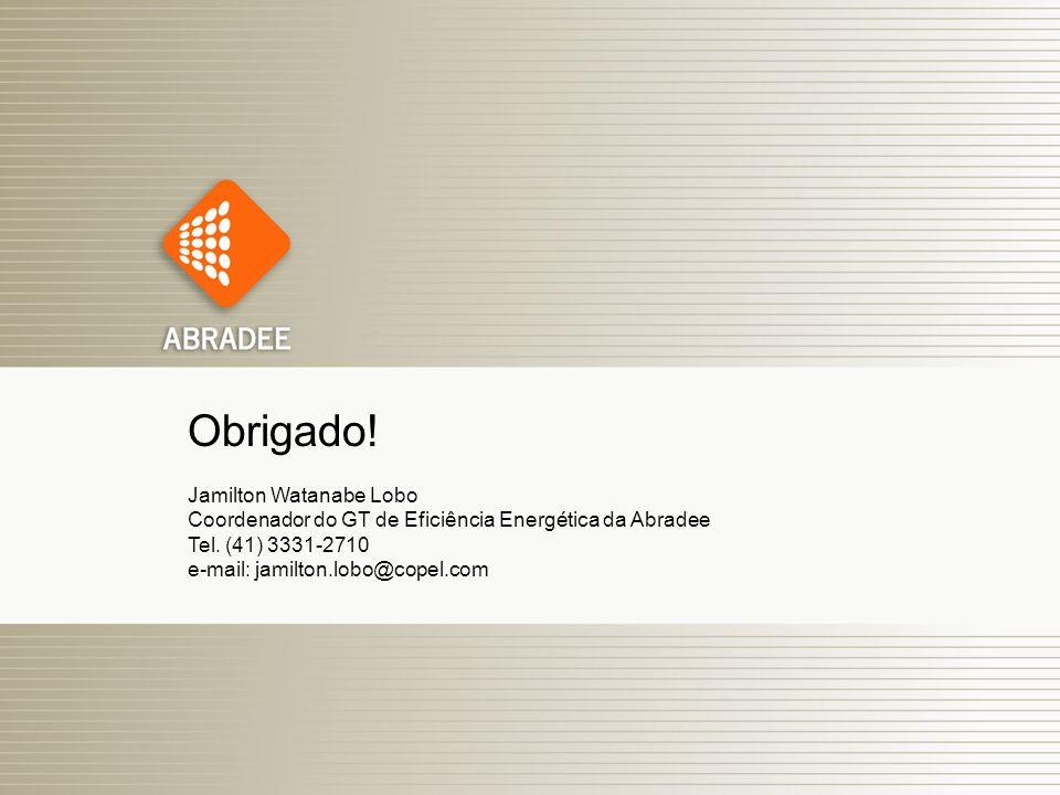 16 Obrigado! Jamilton Watanabe Lobo Coordenador do GT de Eficiência Energética da Abradee Tel. (41) 3331-2710 e-mail: jamilton.lobo@copel.com