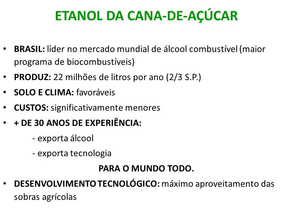 ETANOL DA CANA-DE-AÇÚCAR BRASIL: líder no mercado mundial de álcool combustível (maior programa de biocombustíveis) PRODUZ: 22 milhões de litros por a