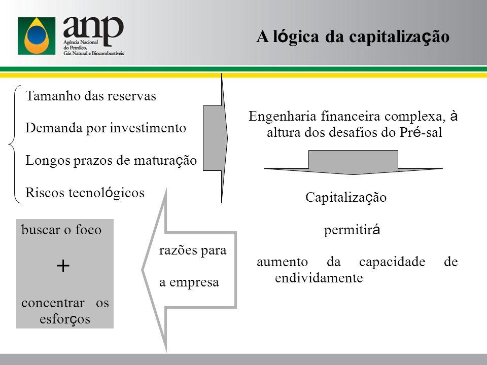 Tamanho das reservas Demanda por investimento Longos prazos de matura ç ão Riscos tecnol ó gicos Engenharia financeira complexa, à altura dos desafios