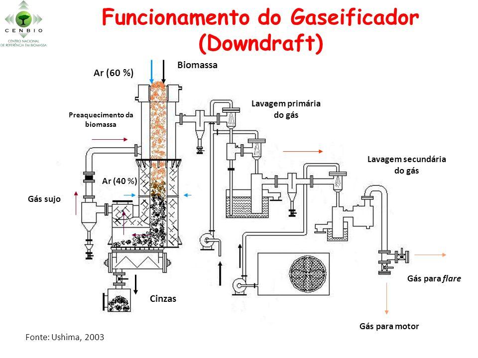 Funcionamento do Gaseificador (Downdraft) Biomassa Cinzas Ar (60 %) Ar (40 %) Gás sujo Preaquecimento da biomassa Lavagem primária do gás Lavagem secu
