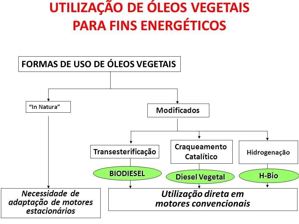 UTILIZAÇÃO DE ÓLEOS VEGETAIS PARA FINS ENERGÉTICOS FORMAS DE USO DE ÓLEOS VEGETAIS In Natura Modificados Transesterificação Craqueamento Catalítico Necessidade de adaptação de motores estacionários Utilização direta em motores convencionais BIODIESEL Diesel Vegetal Hidrogenação H-Bio