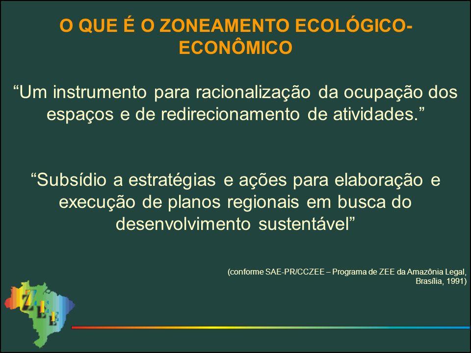 PROPOSTAS PARA O PROGRAMA 3) Do ponto de vista metodológico Realizar uma revisão crítica da metodologia SAE-PR/MMA Definir, com clareza, um conjunto de produtos a serem gerados Buscar a melhoria da relação custo/benefício Orientar a metodologia para atender ao usuário 4) Do ponto de vista da execução Elaborar o ZEE Brasil Estudar a possibilidade/viabilidade de expandir a ação do consórcio de órgãos públicos aos Estados Rever o relacionamento do Programa ZEE com os Estados 5) Do ponto de vista orçamentário Rever a distribuição dos usos Coordenar as fontes