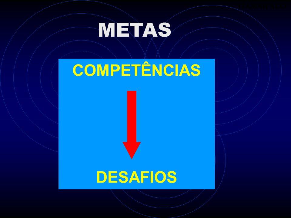 ITAMAR ALLI COMPETÊNCIAS DESAFIOS METAS