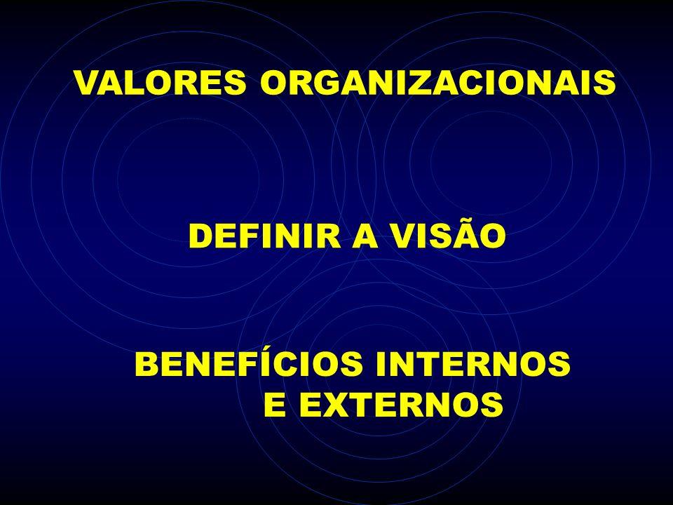 DEFINIR A VISÃO VALORES ORGANIZACIONAIS BENEFÍCIOS INTERNOS E EXTERNOS