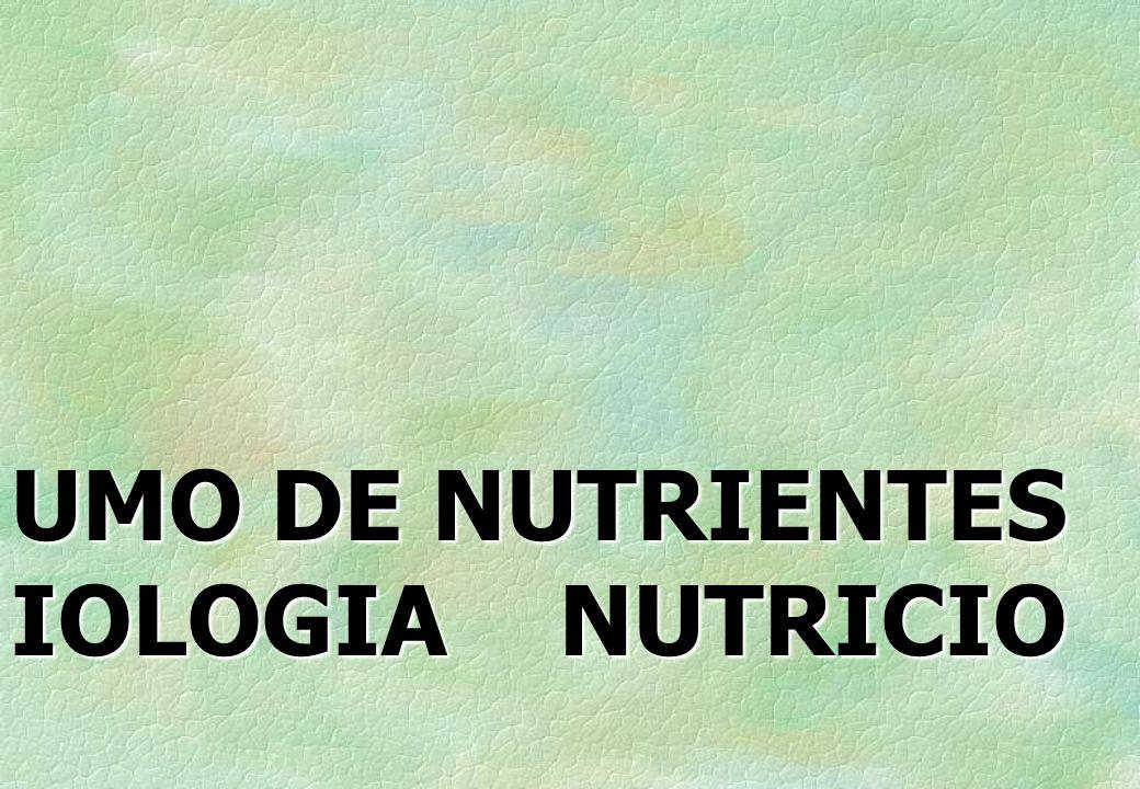 AVALIAÇÃO DO CONSUMO DE NUTRIENTES POR IDOSOS É PREOCUPAÇÃO DA EPIDEMIOLOGIA NUTRICIONAL.
