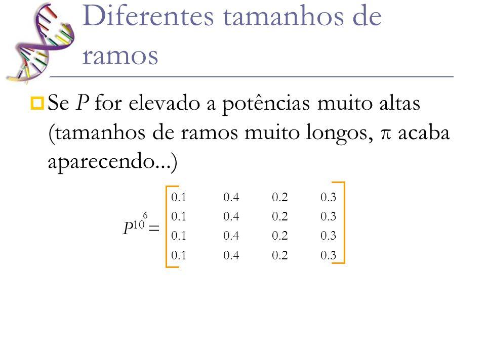 Se P for elevado a potências muito altas (tamanhos de ramos muito longos, π acaba aparecendo...) 0.1 0.4 0.2 0.3 P 10 = 6 Diferentes tamanhos de ramos
