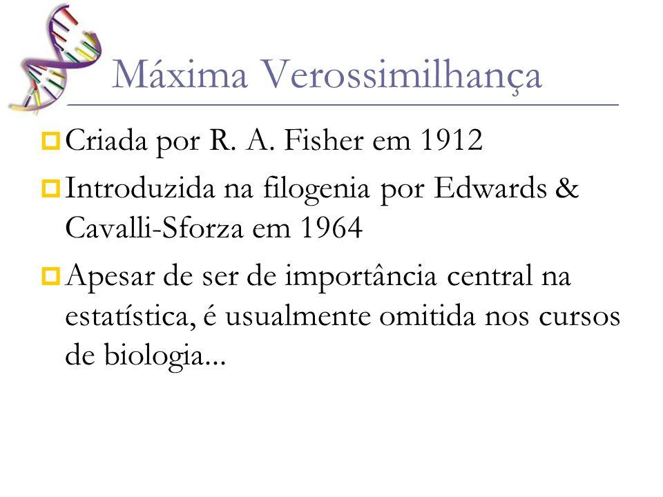 Máxima Verossimilhança Criada por R. A. Fisher em 1912 Introduzida na filogenia por Edwards & Cavalli-Sforza em 1964 Apesar de ser de importância cent