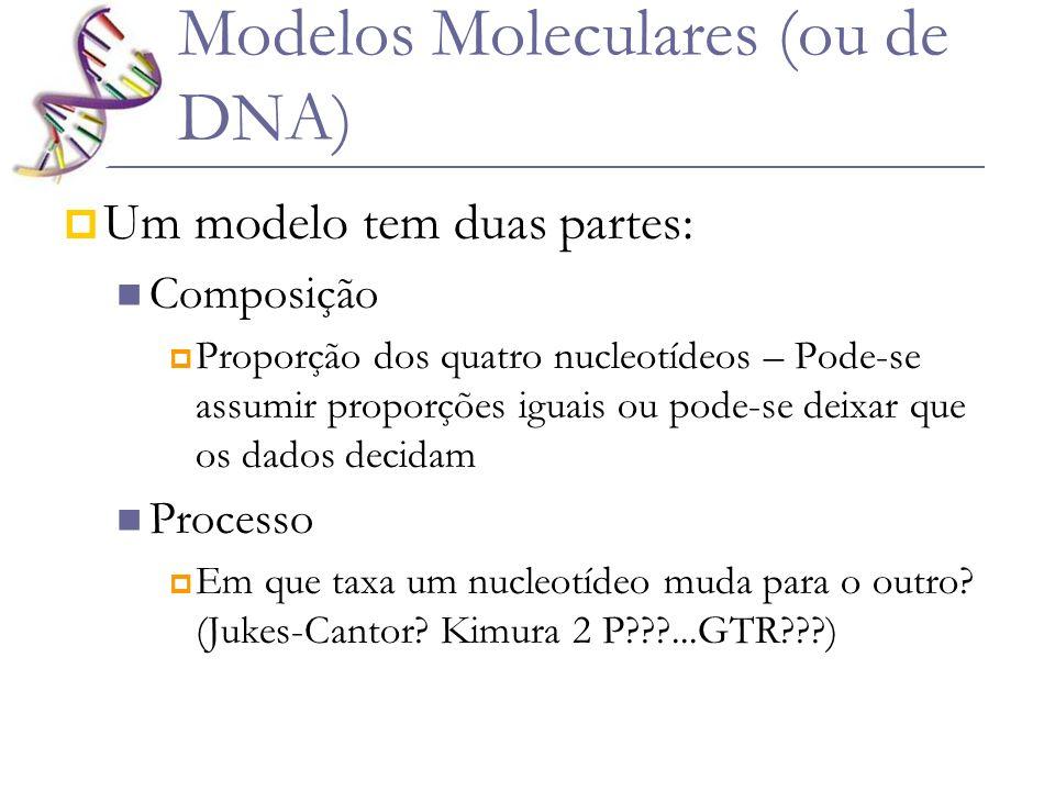 Modelos Moleculares (ou de DNA) Um modelo tem duas partes: Composição Proporção dos quatro nucleotídeos – Pode-se assumir proporções iguais ou pode-se