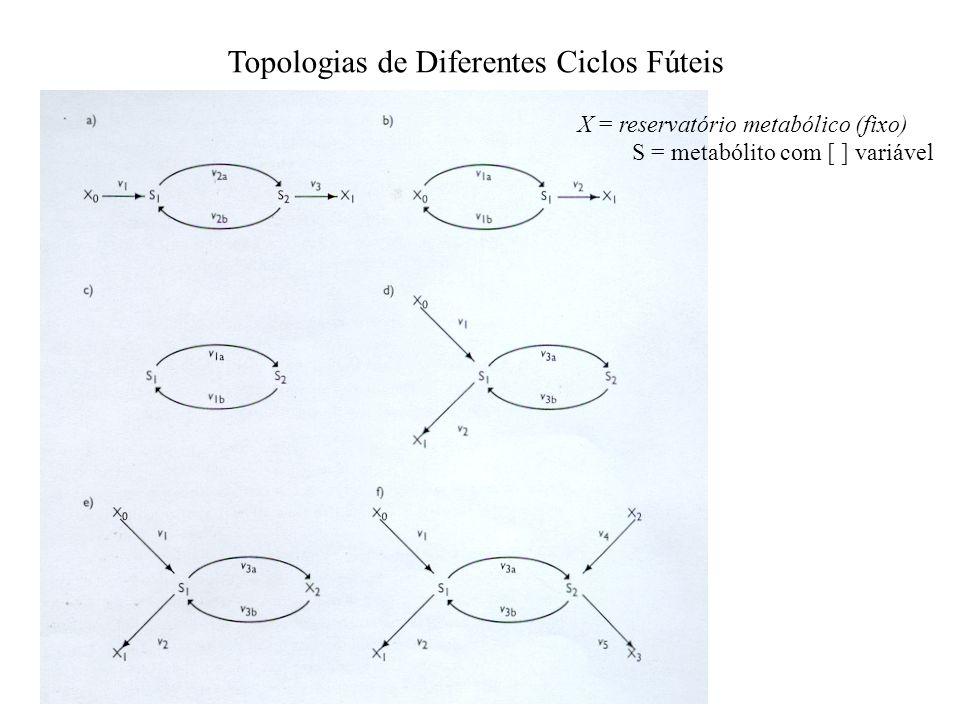 Topologias de Diferentes Ciclos Fúteis X = reservatório metabólico (fixo) S = metabólito com [ ] variável