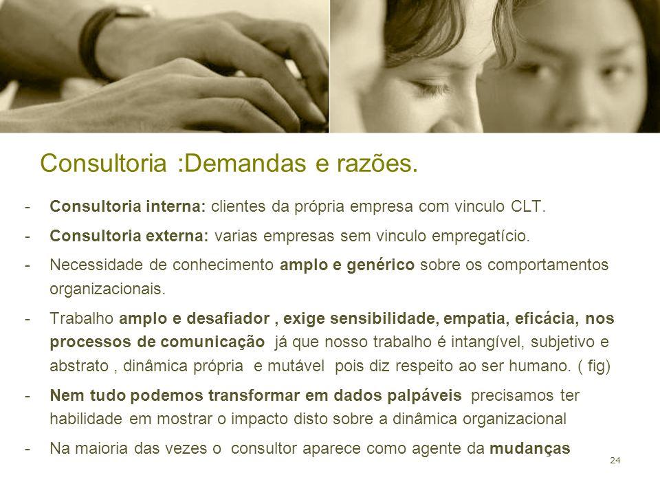 24 -Consultoria interna: clientes da própria empresa com vinculo CLT. -Consultoria externa: varias empresas sem vinculo empregatício. -Necessidade de