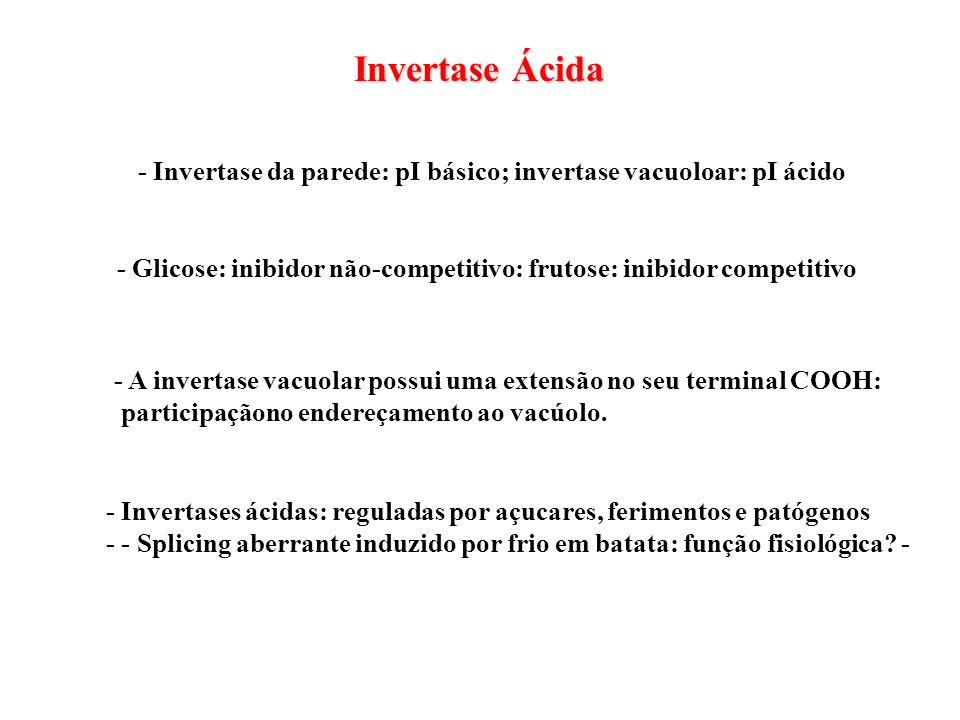 Invertase Ácida - Glicose: inibidor não-competitivo: frutose: inibidor competitivo - Invertase da parede: pI básico; invertase vacuoloar: pI ácido - A
