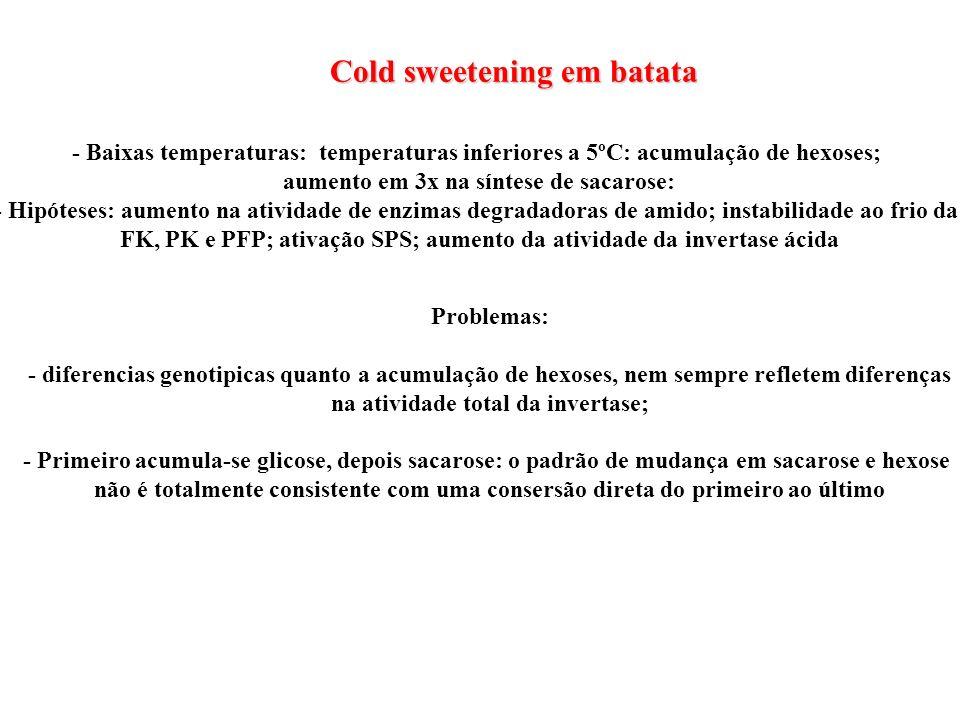 Cold sweetening em batata - Baixas temperaturas: temperaturas inferiores a 5ºC: acumulação de hexoses; aumento em 3x na síntese de sacarose: - Hipótes