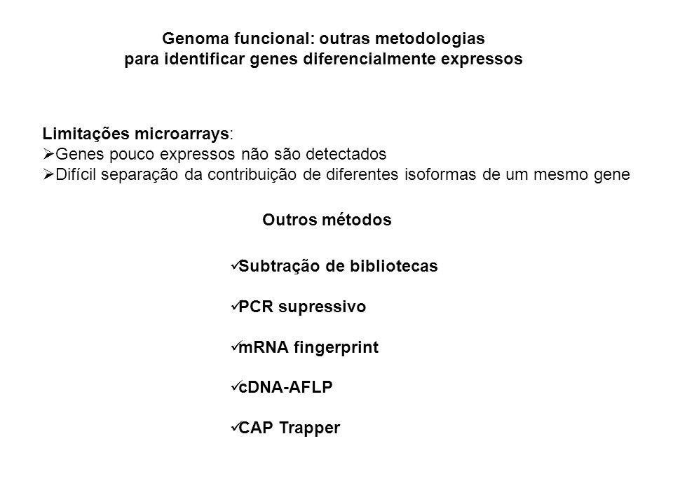 Genoma funcional: outras metodologias para identificar genes diferencialmente expressos Subtração de bibliotecas PCR supressivo mRNA fingerprint cDNA-