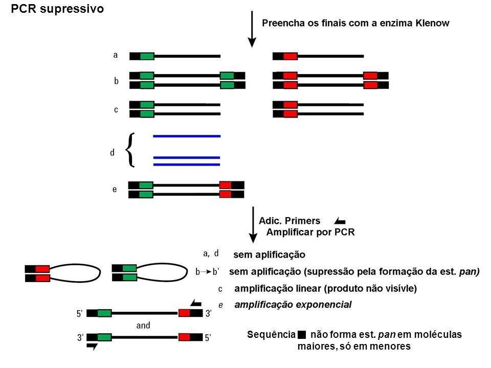 SUPRESSION PCR