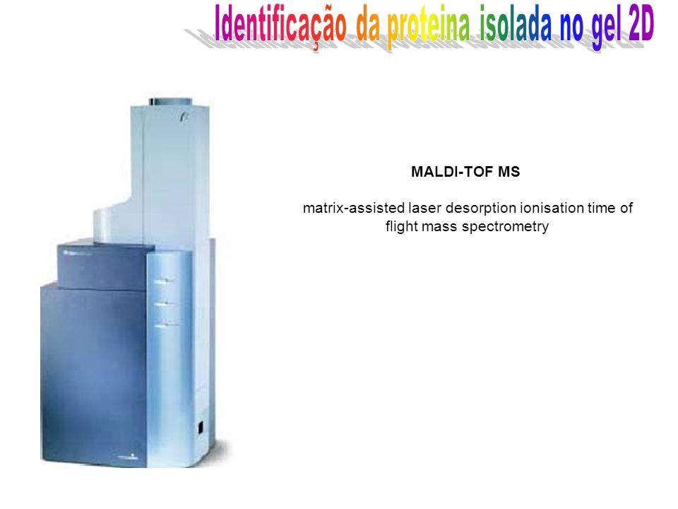 MALDI-TOF MS matrix-assisted laser desorption ionisation time of flight mass spectrometry