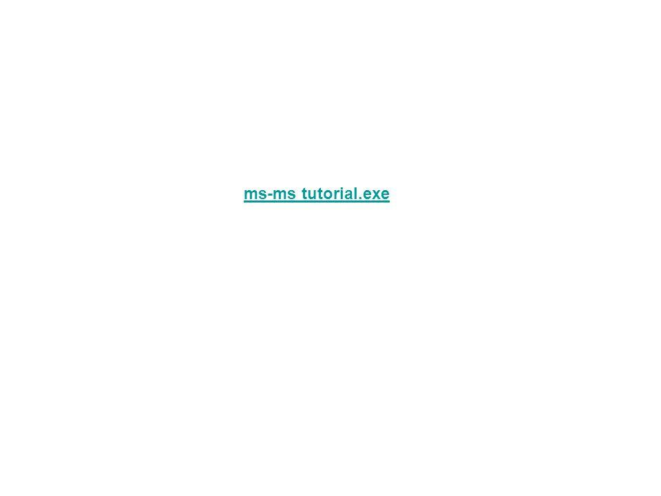 ms-ms tutorial.exe
