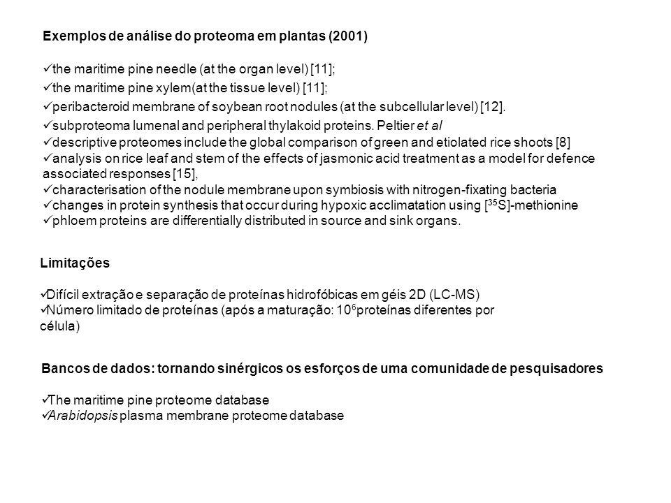 Exemplos de análise do proteoma em plantas (2001) the maritime pine needle (at the organ level) [11]; the maritime pine xylem(at the tissue level) [11