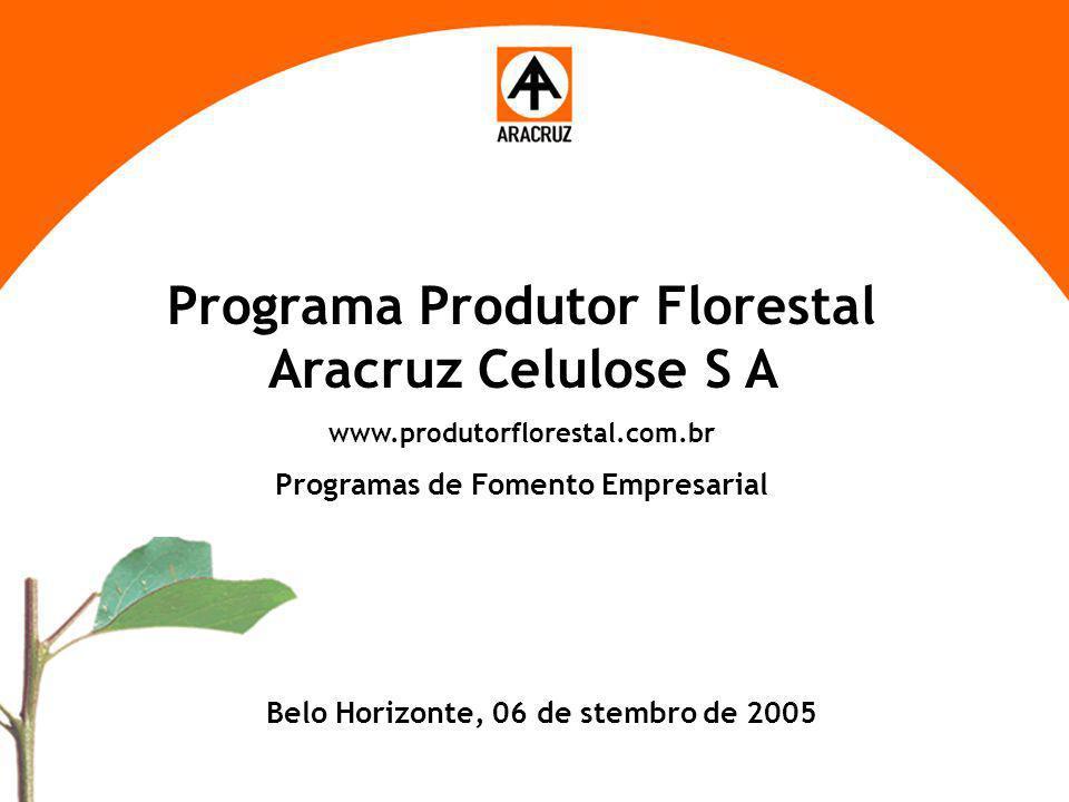 1 Aspectos econômicos Programa Produtor Florestal Aracruz Celulose S A www.produtorflorestal.com.br Programas de Fomento Empresarial Belo Horizonte, 0