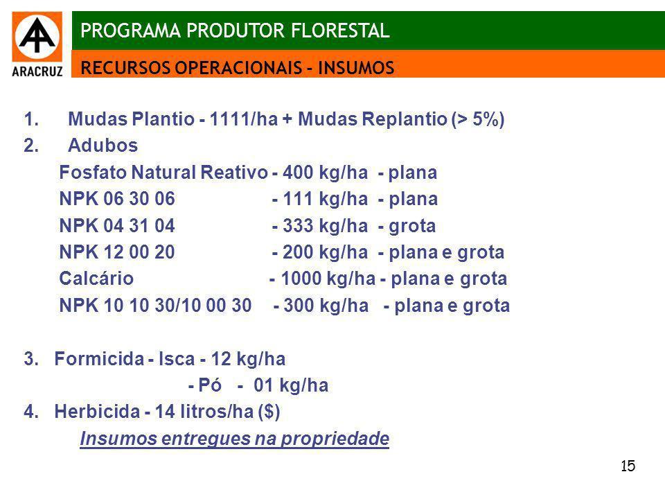 15 Aspectos econômicos 1.Mudas Plantio - 1111/ha + Mudas Replantio (> 5%) 2.Adubos Fosfato Natural Reativo - 400 kg/ha - plana NPK 06 30 06 - 111 kg/h