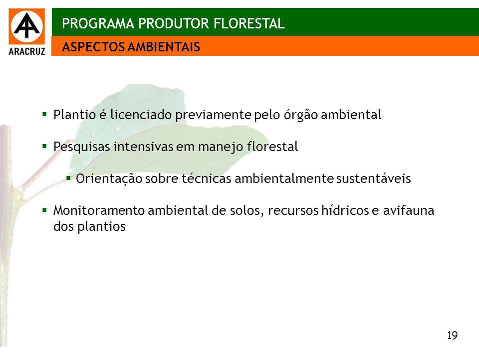 19 Aspectos econômicos Plantio é licenciado previamente pelo órgão ambiental Pesquisas intensivas em manejo florestal Orientação sobre técnicas ambien