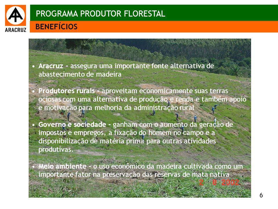 6 Aspectos econômicos Aracruz - assegura uma importante fonte alternativa de abastecimento de madeira Produtores rurais - aproveitam economicamente su