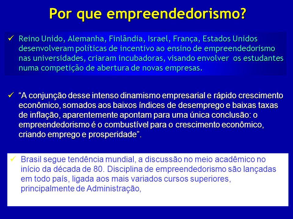 Por que empreendedorismo? Reino Unido, Alemanha, Finlândia, Israel, França, Estados Unidos desenvolveram políticas de incentivo ao ensino de empreende