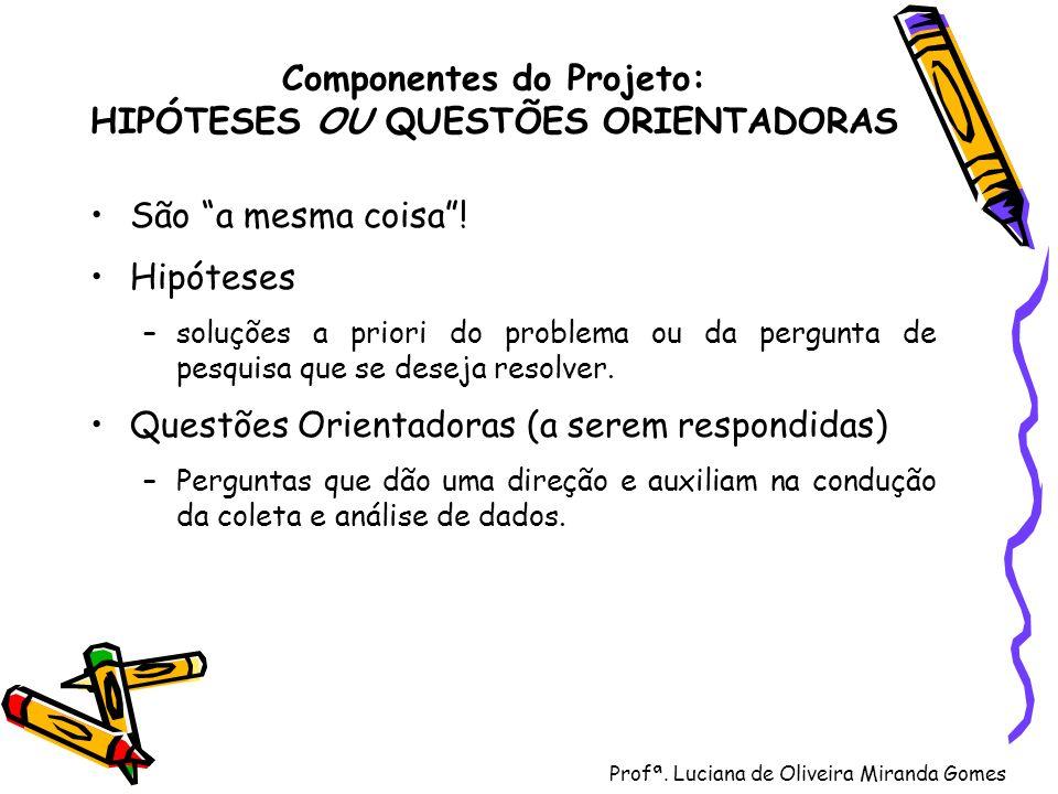 Profª. Luciana de Oliveira Miranda Gomes Componentes do Projeto: HIPÓTESES OU QUESTÕES ORIENTADORAS São a mesma coisa! Hipóteses –soluções a priori do