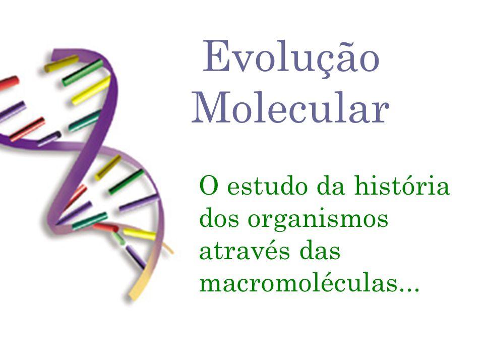 Evolução Molecular O estudo da história dos organismos através das macromoléculas...