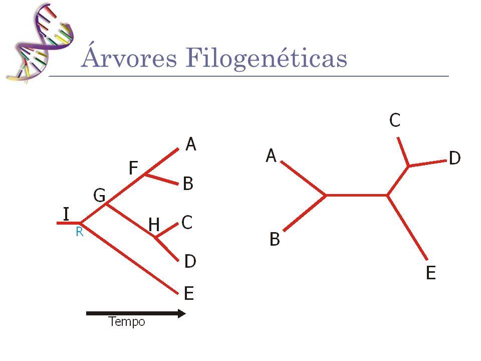 Árvores Filogenéticas