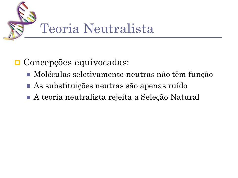 Teoria Neutralista Concepções equivocadas: Moléculas seletivamente neutras não têm função As substituições neutras são apenas ruído A teoria neutralis