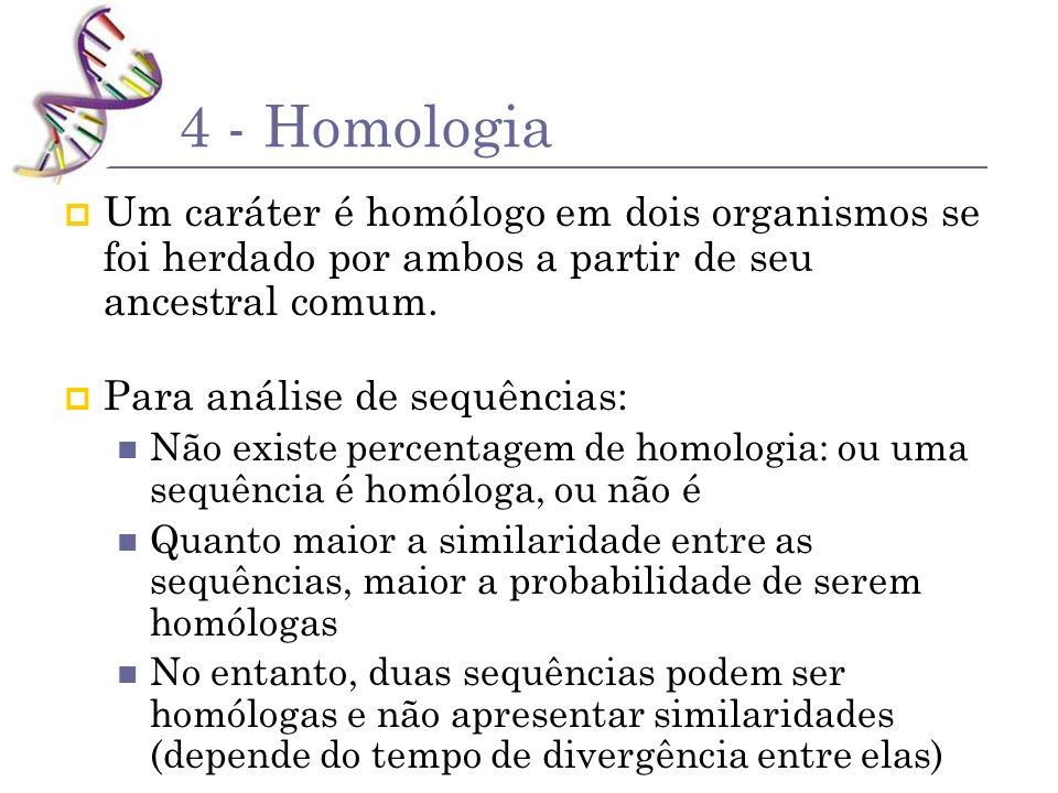 4 - Homologia Um caráter é homólogo em dois organismos se foi herdado por ambos a partir de seu ancestral comum. Para análise de sequências: Não exist