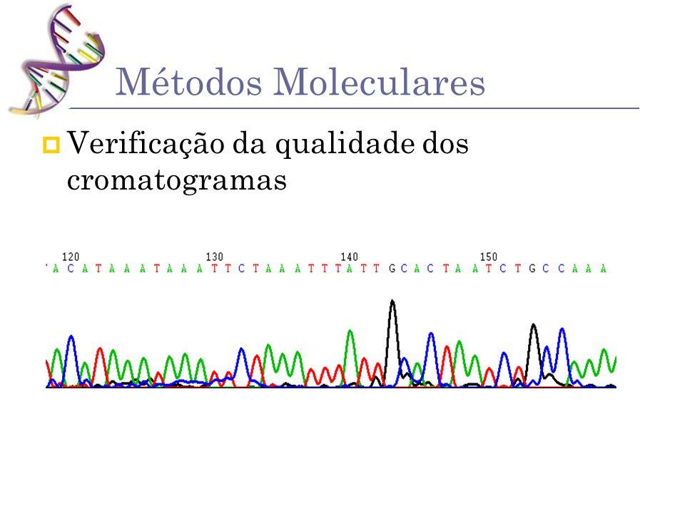Métodos Moleculares Verificação da qualidade dos cromatogramas