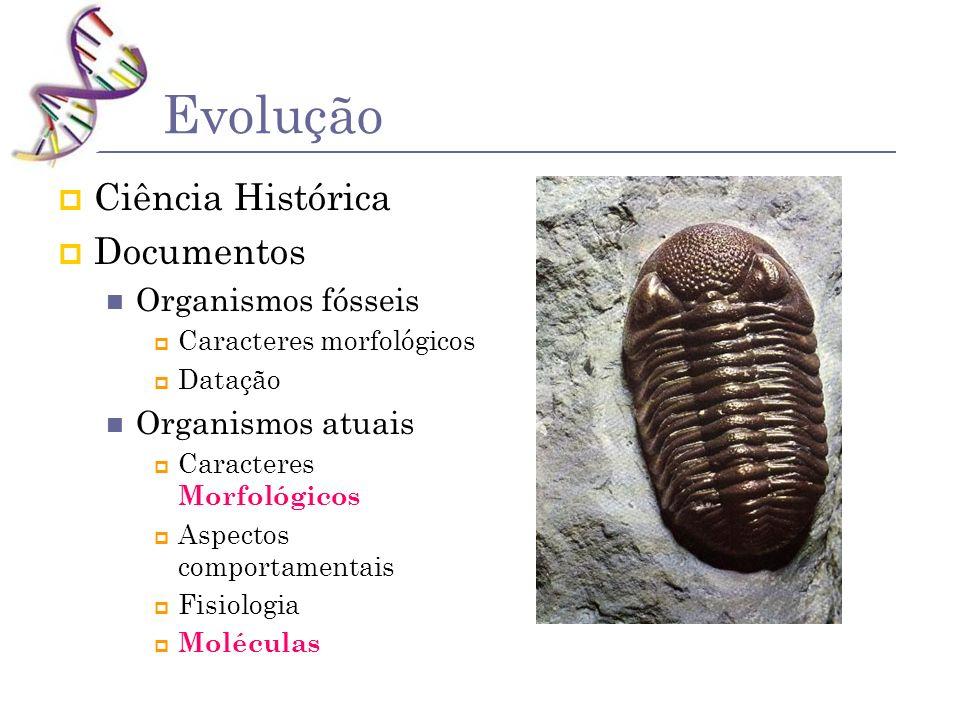 Evolução Ciência Histórica Documentos Organismos fósseis Caracteres morfológicos Datação Organismos atuais Caracteres Morfológicos Aspectos comportame